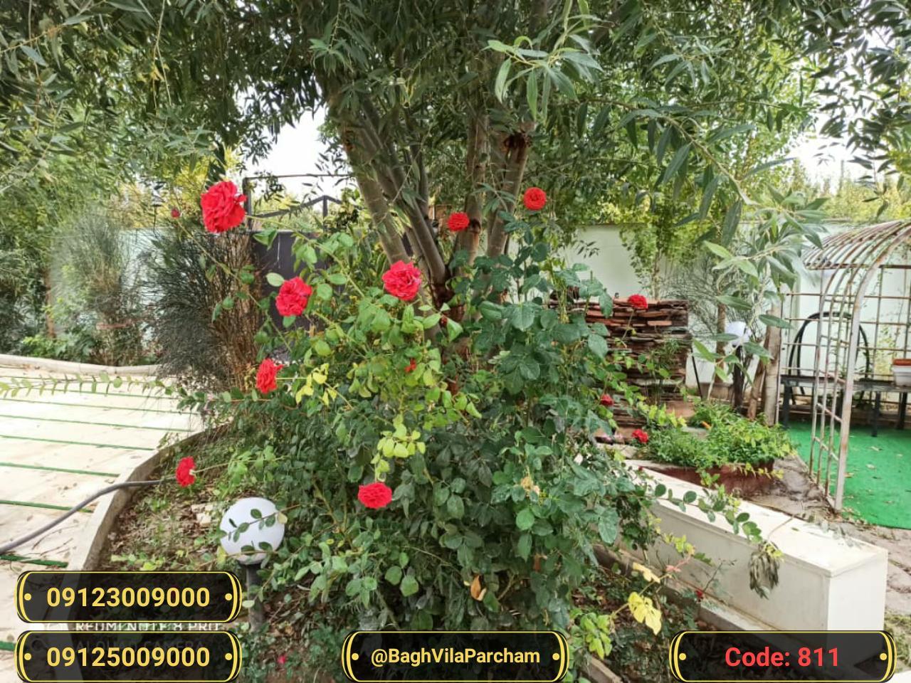 تصویر عکس باغ ویلا شماره 20 از ویلای ۸۰۰ متر ویلا Picture photo image 20 of ۸۰۰ متر ویلا