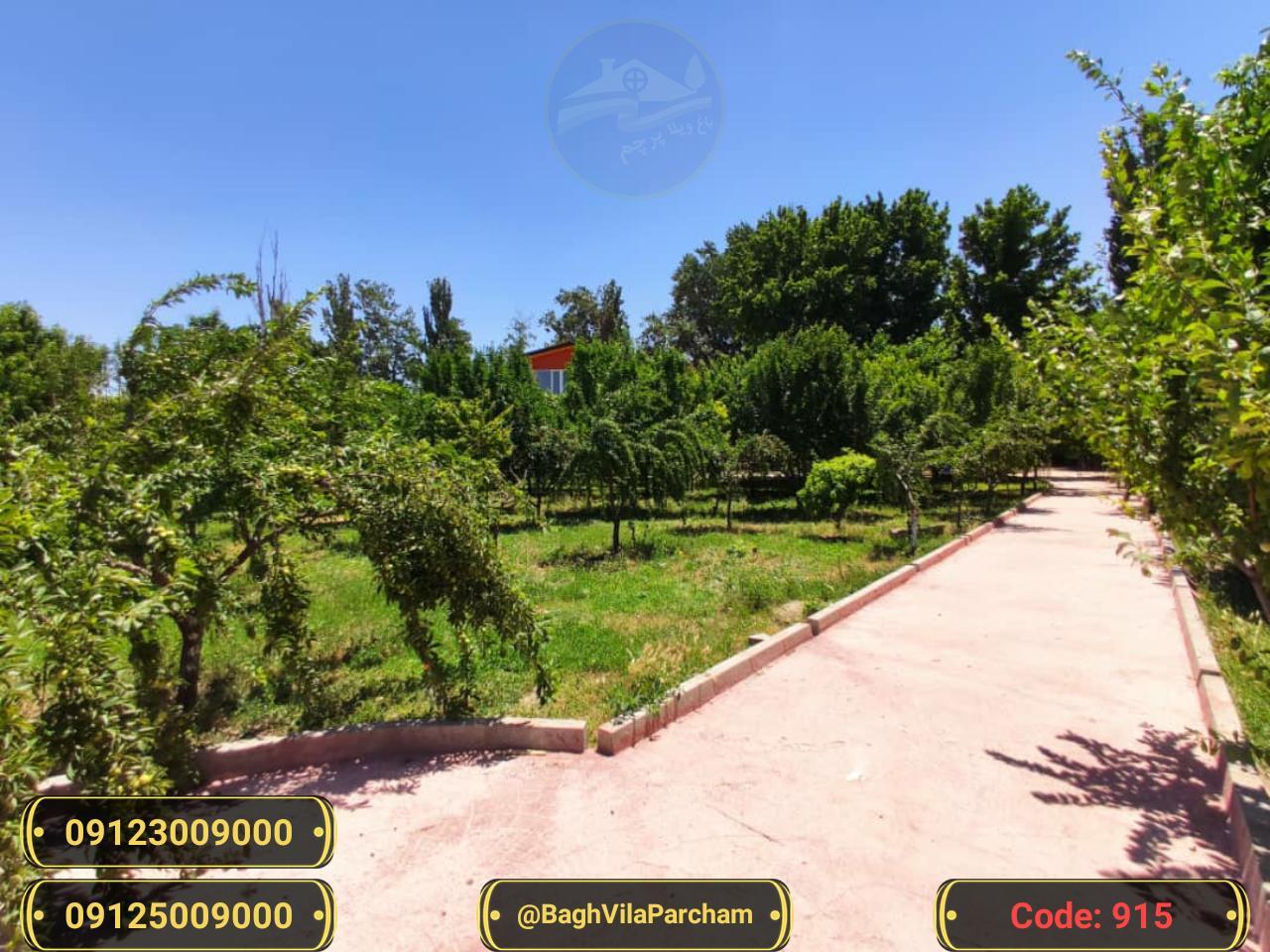 تصویر عکس باغ ویلا شماره 3 از ویلای ۵۶۵۰ متر ویلا کلاسیک تریبلکس Picture photo image 3 of ۵۶۵۰ متر ویلا کلاسیک تریبلکس